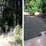 woodinville_backyard_ba
