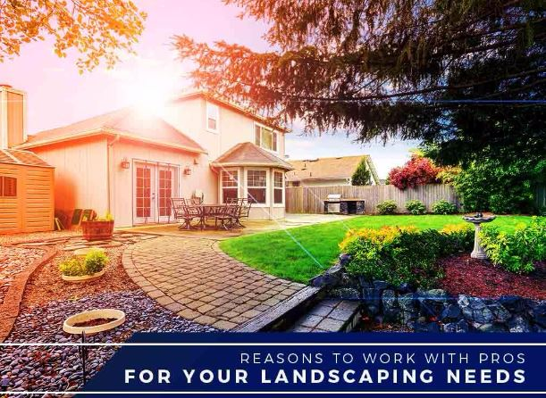 Landscaping Needs